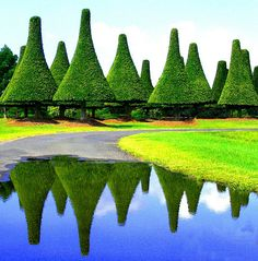 Topiary from the Melaleuca Station Memorial Gardens (and, I kid you not) Crematorium, in Australia.