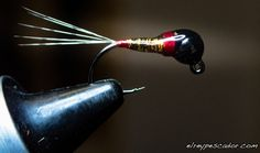 Ninfas (Nymphs) – Pesca a Mosca Fly Fishing Nymphs, Fly Tying Patterns, Trout, Buzzers, Design, Projects, Bead, Decor, Homemade Fishing Lures