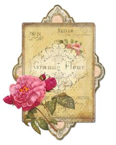 Paris Peony Perfume Print...