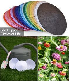 Eco-Friendly Seed Kippot from Circles of Life - Mazelmoments.com