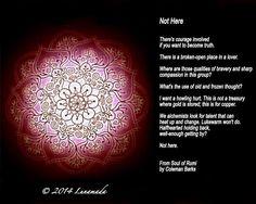 Rumi-Not Here