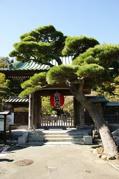 Kamakura   - Explore the World with Travel Nerd Nici, one Country at a Time. http://TravelNerdNici.com