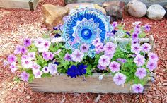 A pretty way to display a plate flower