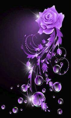 Lovely Rose Flowers In Purple BG - Phone Wallpaper / Background / Screensaver