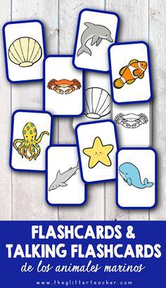 The Glitter Teacher: flash cards English Summer, Ocean Activities, Montessori Materials, English Class, Baby Shark, English Vocabulary, Homeschool, Education, Learning