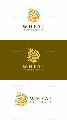 Wheat Logo Template Vector EPS, AI Illustrator