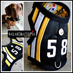 Awesome custom made dachshund harness'  Check out her side :)  Dapper Doxie Duds