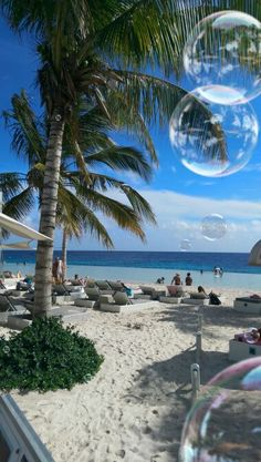 Jan Thiel baai, Curaçao