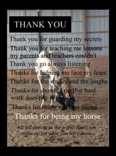 To all of my horses...I have loved you all!...Pork Chop, Heidi, Philip, Jenny, Samantha, Taj, Daphne, Randy, Czar, Skittles, MacIntosh, and Sara...
