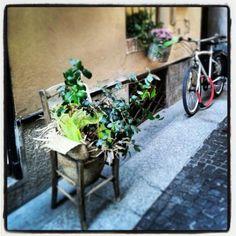 #Travel #lifestile #urban #green #bike #streetstyle