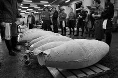 Tsukiji fish market.... visit it while it's still there (to be relocated)