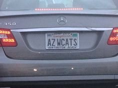 Arizona Wildcats......Maybe I should see if we can get this on a WA plate. LOL