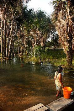 Locais se banham em igarapé próximo a Boa Vista, capital de Roraima. Boa vista tem sete grandes igarapés: Caranã, Caxangá, Frasco, Pricumã, Grande, Paca e Mirandinha. m igarapé é um curso d'água amazônico de primeira ou em terceira ordem, constituído por um braço longo de rio ou canal. Existe em pequeno número na Bacia amazônica, caracterizados por pouca profundidade e por correrem quase no interior da mata.