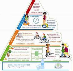 ....... YA ERA HORA .......: La nueva pirámide alimenticia más adaptada a nuestro tiempo