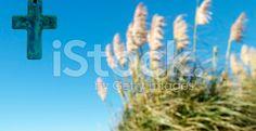 New Zealand Christianity royalty-free stock photo