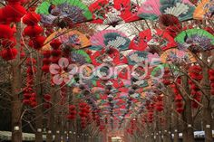paper fans lucky red lanterns chinese lunar new year decorations beijing chin - Stock Footage | by billperry