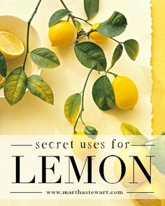Secret Uses for Lemon | Martha Stewart Living - The acidity of lemon adds zip to what's on your plate and in your glass, but it can also be beneficial in many other spots around the kitchen. So the next time life gives you lemons, don't make lemonade -- try one of these unconventional uses instead.