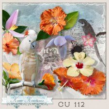 CU Vol. 112 Exotic 2 by Kreen Kreations #CUdigitals cudigitals.comcu commercialdigitalscrapscrapbookgraphics #digiscrap