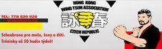 Wing Tsun Kung Fu, Wing Chun, Tsunami, Hong Kong, Wings, Fictional Characters, Tsunami Waves, Feathers, Fantasy Characters