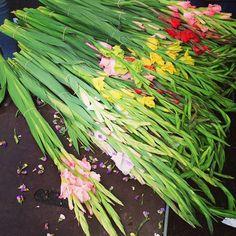 Asparagus, Vegetables, Flowers, Food, Studs, Essen, Vegetable Recipes, Meals, Royal Icing Flowers