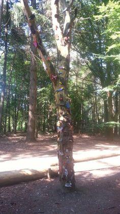 Kinderwerk op boom