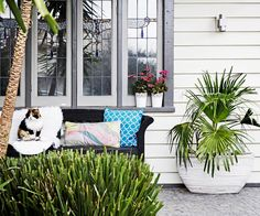 This Melbourne home is bursting with colourful tropical-themed decorating ideas.