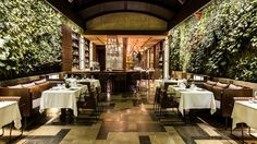 restaurant design with greens - Google Search