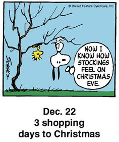 Now I Know How Stockings Feel On Christmas Eve - Snoopy and Woodstock Hanging Upside Down on Tree Branch