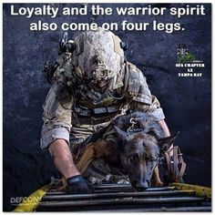 A Soldier and his Military War Battle Buddies! Military Working Dogs, Military Dogs, Police Dogs, Military Service, Dog Soldiers, War Dogs, Belgian Malinois, American Soldiers, Service Dogs