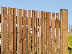 Privacy Fence Designs, Back Deck, Arch, Wood, Crafts, Image, Fences, Gates, Gardening