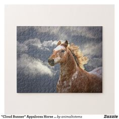 """""""Cloud Runner"""" Appaloosa Horse and Clouds Jigsaw Puzzle Equine Photography, Animal Photography, Black Lab Puppies, Corgi Puppies, Black Labrador, Black Labs, Dog Grooming Business, Appaloosa Horses, English Springer Spaniel"""