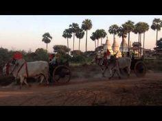 Bagan - Myanmar Bagan, Around The Worlds, Travel, Animals, Viajes, Animales, Animaux, Destinations, Animal