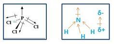 Kepolaran Molekul dalam Senyawa Organik | Senyawa organik