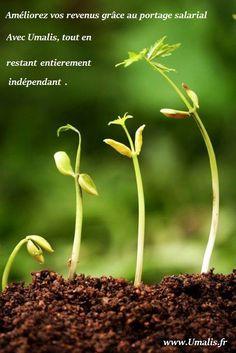 #Portage #Salarial #Entrepreneur #portagesalarial #indépendant #consultant www.Umalis.fr