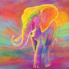 Elephant Color Painting