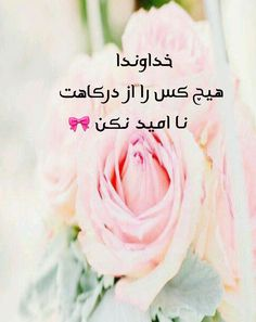 Persian Poetry, Animation, Posters, Messages, Rose, Flowers, Plants, Harp, Pink