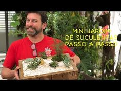 Mini Jardim de Suculentas Passo a Passo - YouTube