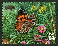 US Stamp 2001 - Great Plains Prairie Painted Lady Butterfly and American Buffalo Butterfly Flowers, Beautiful Butterflies, Valley Of Flowers, Tropical Art, Flower Stamp, Small Art, Woman Painting, Stamp Collecting, Various Artists