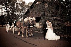 Raccoon Creek Golf Course Wedding Littleton Colorado Horse Carriage