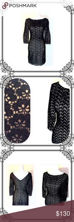 Black Lace Illusion dress EUC // Like new condition // Traffic stopper dress.// Back zip // Diane von Furstenberg Dresses