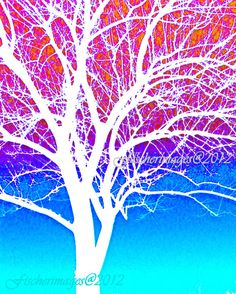 Abstract+Tree+Blue+Red+White+Photo+Print+Fine+Art+by+Fischerimages,+$28.95
