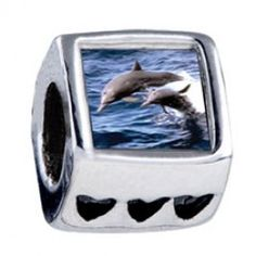 Dolphin Family Photo Heart Charms  Fit pandora,trollbeads,chamilia,biagi,soufeel and any customized bracelet/necklaces. #Jewelry #Fashion #Silver# handcraft #DIY #Accessory