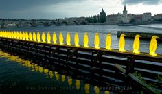 Yellow penguins in Prague © Art installation by Cracking Art Group