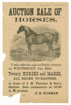 Horse Auction poster
