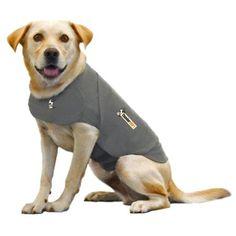 4 LTR.!! Vorratsdose xxl chien dog food métal nouveau