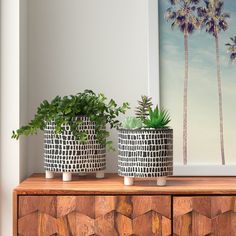 Online shopping for Planters - Pots, Planters & Container Accessories from a great selection at Patio, Lawn & Garden Store. Outdoor Planters, Planter Pots, Planter Garden, Fall Planters, Plastic Planter, Patio Plan, Contemporary Planters, Modern Planters, Contemporary Ceramics