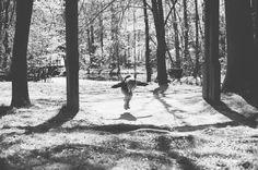 hickory cluster reston virginia » Posy Quarterman Photography