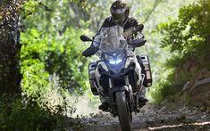 Descargar fondos de pantalla Benelli TRK 502, offroad, 2018 motos, el piloto, Benelli
