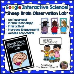 Google Interactive Science! Sheep Brain Observation Lab : We have developed this INTERACTIVE DIGITAL template to engage students either in the classroom or at home using a 1:1 device environment. This original product is provided through web-based Google file sharing, contained on the Internet 'cloud' and allows you and your students to access, edit, and print files from any computer or device. $