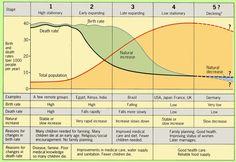 Image result for demographic transition model